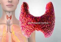 Что такое гормон Т3?