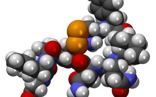 Показатели нормы гормонов щитовидной железы у женщин