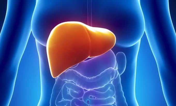 Печеночная недостаточность может стать причиной повышенного уровня гормона