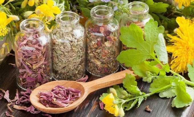 Можно готовить общеукрепляющий настой для щитовидной железы. Следует перемешать в одинаковых пропорциях предварительно высушенные и перемолотые ингредиенты: цветки фиалки, крапиву, корень солодки, корни лопуха, кукурузные рыльца, листья ореха