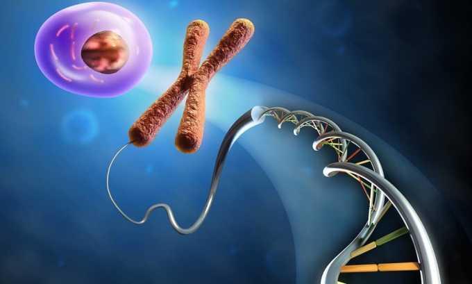 Болезнь Хашимото является генетически обусловленной. Выявлено, что этот вид тиреоидита наиболее часто выявляется у людей, которые имеют родственников с этой болезнью