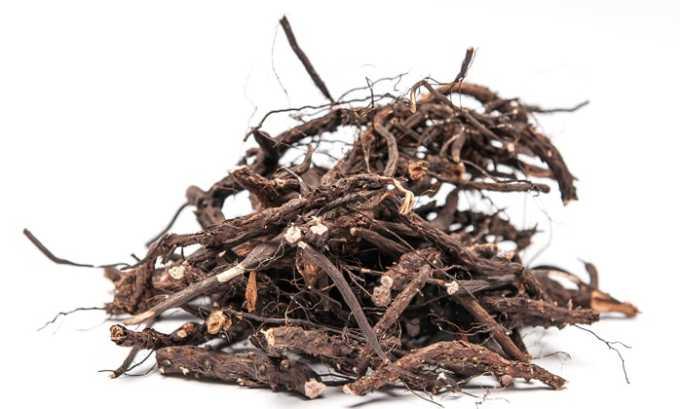 Измельчить в кофемолке сухой корень лапчатки белой, далее этот порошок можно использовать для лечебной настойки