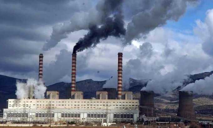 Появление патологи может спровоцировать плохая экология