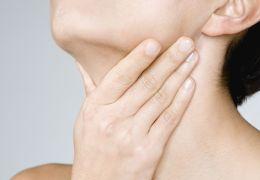 Где находится орган щитовидная железа и за что отвечает
