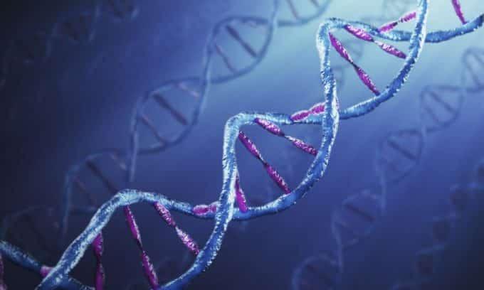 Генетическая предрасположенность является одной из причин увеличения щитовидной железы