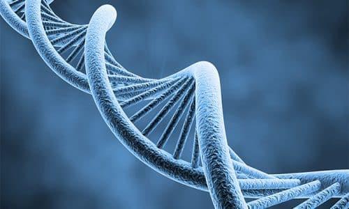 В отдельных случаях относительный йододефицит может провоцироваться генетическими факторами