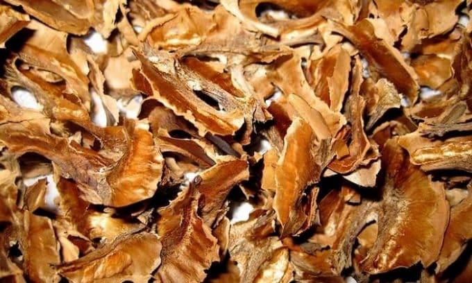 Избавиться от болезни поможет настойка из перегородок грецких орехов