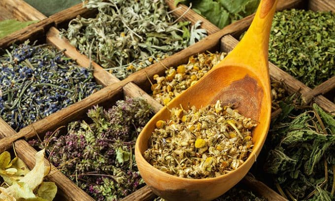 Эффективен для снятия воспаления щитовидной железы сбор из пустырника, боярышника и дрока красильного