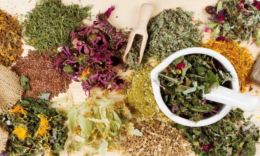 Травы для щитовидной железы используют в качестве средства профилактики болезни при наследственной предрасположенности к ней или как способ купировать развитие патологии на ранней стадии