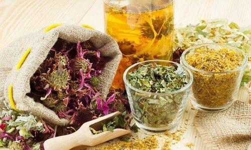 Поможет в лечении заболевания травяной сбор. В него могут входить боярышник, пустырник, земляника, крапива, душник, календула