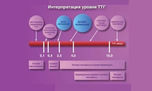 При расшифровке результатов исследования на тиреотропный гормон учитывается норма концентрации тиреотропина в зависимости от пола и возраста пациента