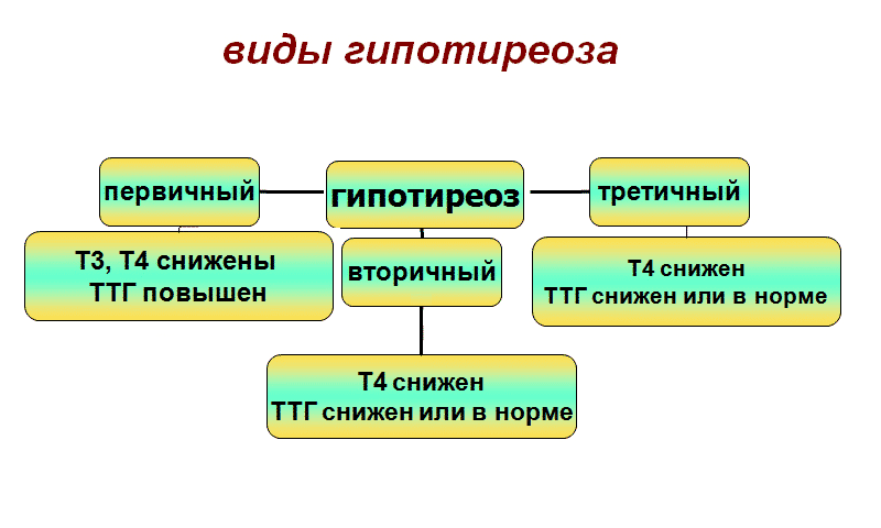 По этиологии гипотериоз делится на три вида